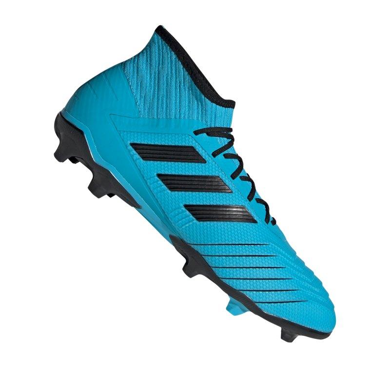 adidas Predator 19.2 FG Blau Schwarz - blau