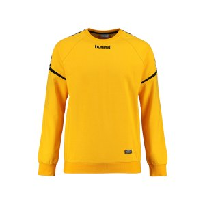 hummel-authentic-charge-cotton-sweatshirt-f5001-fussball-teamsport-mannschaft-ausruestung-textil-sweatshirts-3709.png