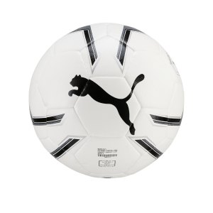 puma-pro-training-2-trainingsball-weiss-f01-082818-equipment.png