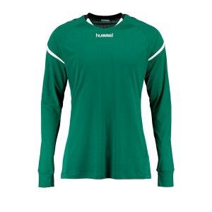 10124662-hummel-authentic-charge-trikot-langarm-gruen-f6140-004616-fussball-teamsport-textil-trikots.png