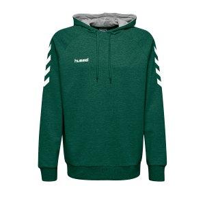 10124712-hummel-cotton-hoody-kids-gruen-f6140-203509-fussball-teamsport-textil-sweatshirts.png