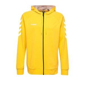 10124723-hummel-cotton-kapuzenjacke-gelb-f5001-204230-fussball-teamsport-textil-jacken.png