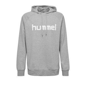 10124753-hummel-cotton-logo-hoody-kids-grau-f2006-203512-fussball-teamsport-textil-sweatshirts.png