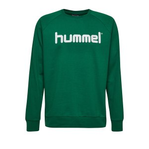 10124774-hummel-cotton-logo-sweatshirt-kids-gruen-f6140-203516-fussball-teamsport-textil-sweatshirts.png