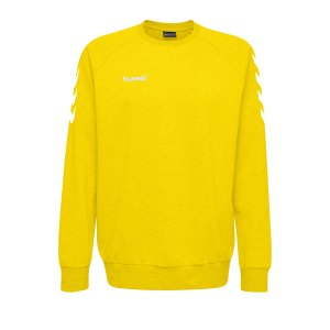 10124823-hummel-cotton-sweatshirt-kids-gelb-f5001-203506-fussball-teamsport-textil-sweatshirts.png