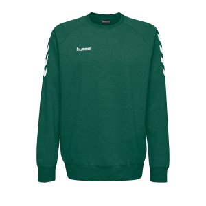 10124825-hummel-cotton-sweatshirt-kids-gruen-f6140-203506-fussball-teamsport-textil-sweatshirts.png