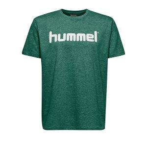 10124867-hummel-cotton-t-shirt-logo-kids-gruen-f6140-203514-fussball-teamsport-textil-t-shirts.png