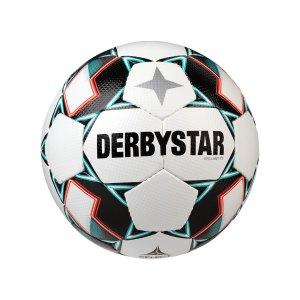 derbystar-brilliant-tt-v20-trainingsball-f142-1133-equipment_back.png