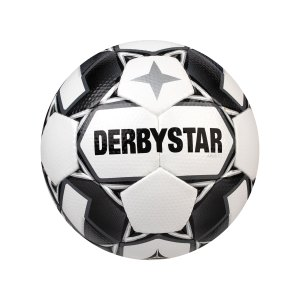 derbystar-apus-tt-v20-trainingsball-f120-1154-equipment_front.png