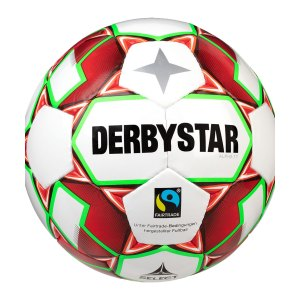 derbystar-alpha-tt-v20-trainingsball-f134-1155-equipment_front.png
