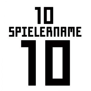 deutschland-dfb-originalflock-wm-2018-weltmeisterschaft-heroset-home-5.jpg