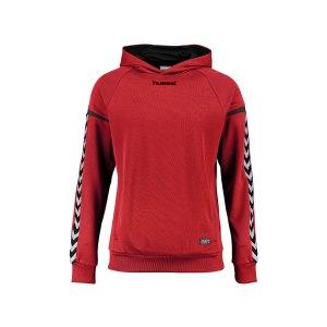 hummel-authentic-charge-kapuzensweat-kids-f3062-teamsport-mannschaft-sport-ausstattung-133403.jpg