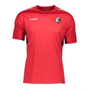 hummel-sc-freiburg-tech-move-t-shirt-f3062-203097-replicas-t-shirts-national.jpg