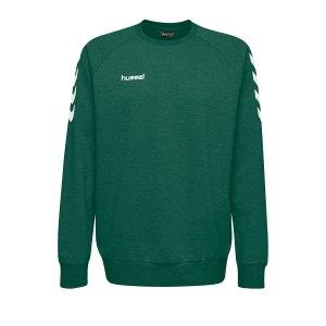 10124819-hummel-cotton-sweatshirt-gruen-f6140-203505-fussball-teamsport-textil-sweatshirts.png