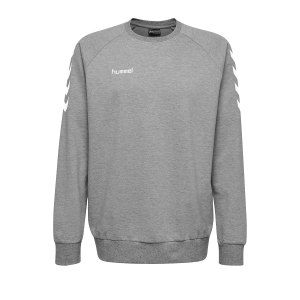 10124824-hummel-cotton-sweatshirt-kids-grau-f2006-203506-fussball-teamsport-textil-sweatshirts.png