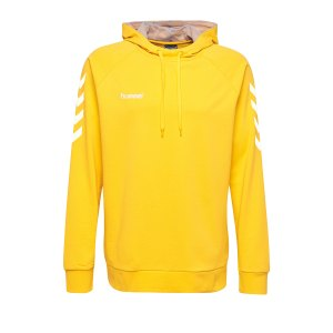 10124710-hummel-cotton-hoody-kids-gelb-f5001-203509-fussball-teamsport-textil-sweatshirts.png