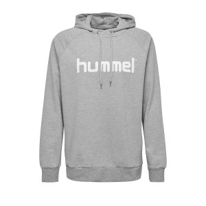 10124753-hummel-cotton-logo-hoody-kids-grau-f2006-203512-fussball-teamsport-textil-sweatshirts.jpg