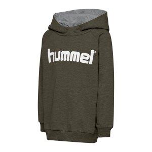 hummel-cotton-logo-hoody-kids-gruen-f6084-203512-teamsport_front.png