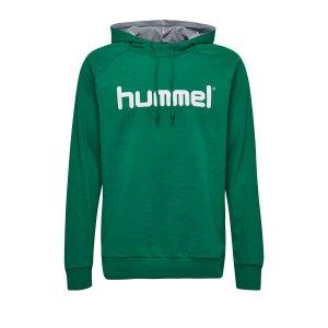 10124754-hummel-cotton-logo-hoody-kids-gruen-f6140-203512-fussball-teamsport-textil-sweatshirts.png