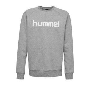 10124773-hummel-cotton-logo-sweatshirt-kids-grau-f2006-203516-fussball-teamsport-textil-sweatshirts.png