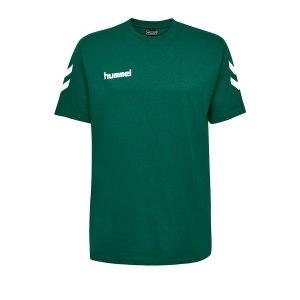 10124849-hummel-cotton-t-shirt-kids-gruen-f6140-203567-fussball-teamsport-textil-t-shirts.png