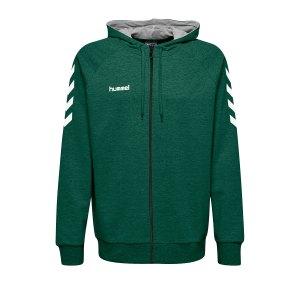 10124727-hummel-cotton-kapuzenjacke-gruen-f6140-204230-fussball-teamsport-textil-jacken.png
