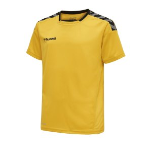 hummel-authentic-poly-trikot-kurzarm-gelb-f5115-teamsport-204919.png