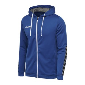 hummel-authentic-poly-kapuzenjacke-f7045-204937-teamsport_front.png