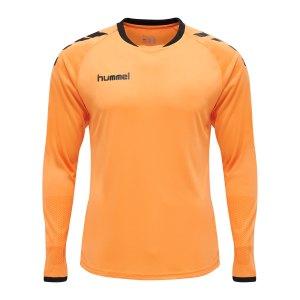 hummel-core-gk-torwarttrikotset-kids-orange-f5006-205281-teamsport_front.png