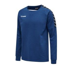 hummel-authentic-training-sweatshirt-f7045-205373-teamsport.png