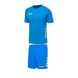 hummel-promo-trikotset-kurzarm-blau-f7428-fussball-teamsport-textil-trikots-205870.png