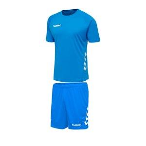 hummel-promo-trikotset-kurzarm-kids-blau-f7428-fussball-teamsport-textil-trikots-205871.png