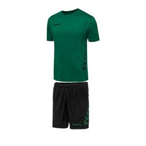 hummel-promo-duo-trikotset-kurzarm-gruen-f6241-fussball-teamsport-textil-trikots-205872.png