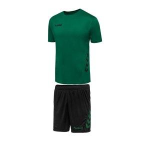 hummel-promo-duo-trikotset-kurzarm-kids-gruen-f6241-fussball-teamsport-textil-trikots-205873.png