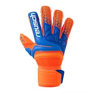 reusch-prisma-prime-s1-evolution-tw-handschuh-f296-torwart-training-outfit-sportlich-alltag-fussball-3870239.jpg