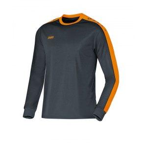 jako-striker-trikot-langarm-grau-f21-jersey-teamsport-vereine-mannschaften-men-herren-maenner-4306.jpg