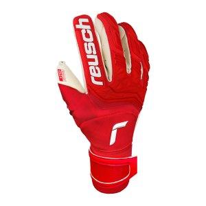 reusch-attrakt-freegel-gold-x-tw-handschuh-f3002-5170960-equipment_front.png