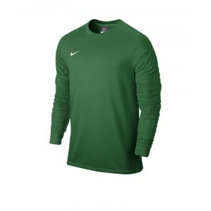 nike-park-goalie-2-torwarttrikot-goalkeeper-jersey-kinder-children-kids-gruen-f302-588441.png