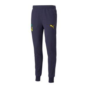 puma-future-njr-jogginghose-blau-f06-605555-fussballtextilien_front.png