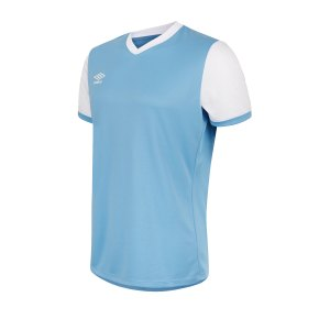 umbro-witton-trikot-blau-f1sw-fussball-teamsport-textil-trikots-62943u.jpg