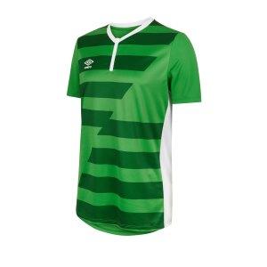 umbro-vision-trikot-kurzarm-gruen-feh3-fussball-teamsport-textil-trikots-64395u.png