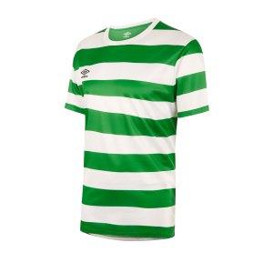 umbro-terrace-trikot-gruen-fehe-fussball-teamsport-textil-trikots-64497u.png