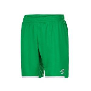 umbro-premier-short-hose-kurz-gruen-fehe-65193u-fussball-teamsport-textil-shorts-kurze-hose-teamsport-spiel-training-match.jpg