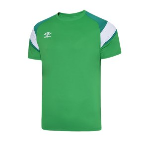 umbro-training-jersey-trikot-gruen-fgre-65289u-teamsport.jpg