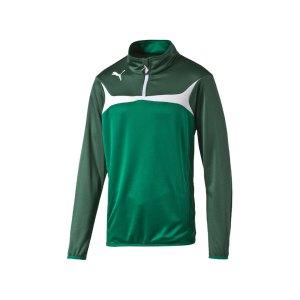 puma-esito-3-zip-trainingstop-kids-sweatshirt-langarm-kinder-kinderkleidung-training-trainingskleidung-gruen-f05-653966.jpg