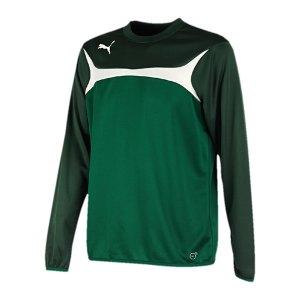 puma-esito-3-sweatshirt-training-trainingsshirt-herren-men-maenner-gruen-weiss-f05-653967.jpg