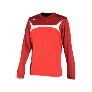 puma-esito-3-sweatshirt-training-trainingsshirt-herren-men-maenner-rot-weiss-f01-653967.png