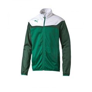 puma-esito-3-polyesterjacke-jacke-jacket-tricot-trikotjacke-maenner-herren-man-trainingskleidung-teamwear-mannschaftskleidung-gruen-weiss-f05-653973.jpg