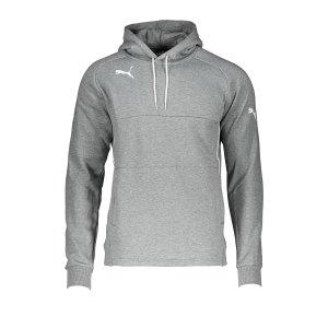 puma-esito-3-hoody-grau-f38-fussball-teamsport-textil-sweatshirts-653979.jpg