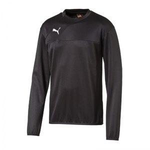 puma-esquadra-training-sweatshirt-pullover-fussball-warmmachsweat-kids-kinder-teamsport-f27-schwarz-654380.jpg
